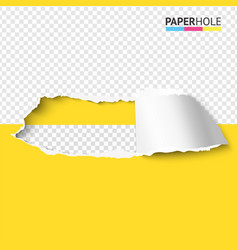 color torn paper hole banner with cardboard edge vector image
