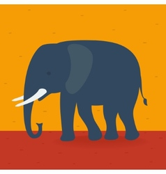 Elephant walking in the field vector image