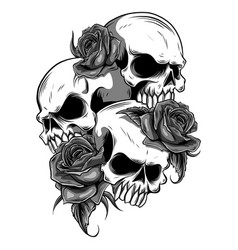 Human skull with roses drawn in tattoo style vector