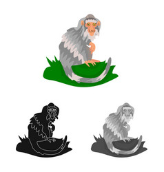 Monkey and animal symbol vector