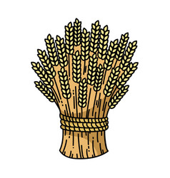 Sheaf of wheat colorful flat vector