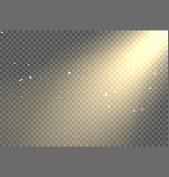 sun light flare background effect sunlight ray vector image