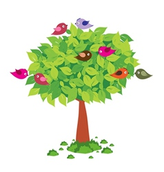 Tree and birds spring vector image