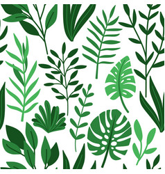 tropic palm green leaves pattern vector image