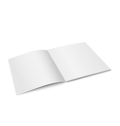 white mock up of magazine isolated vector image