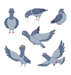 cartoon set of funny pigeons of vector image