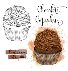beautiful hand drawn watercolor cupcakes with vector image
