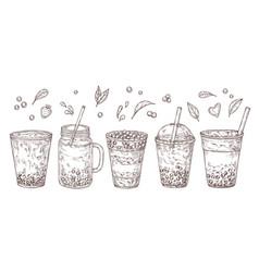 Bubble tea sketch summer drink flavored teas vector