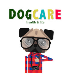 dog care concept design pet shop dog shop vector image