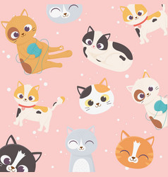 pet cats cartoon characters face resting with wool vector image
