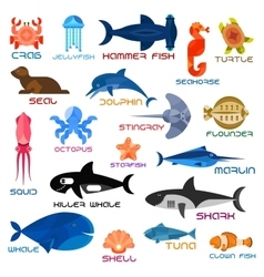 Oceanarium ocean animals and fishes with names vector image vector image