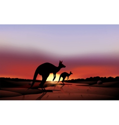 A big and a small kangaroo in the desert vector image vector image