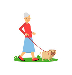 senior woman walking with a dog pensioner people vector image