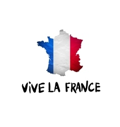 Vive la France message and national French vector image