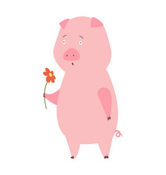 a pig domestic animal vector image