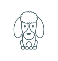 Cute little dog french poodle line style icon vector