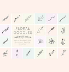 Hand drawn doodle florals and plants vector