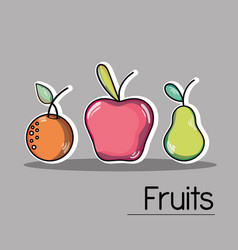 Set delicious and fresh tropical fruits vector