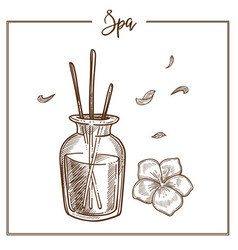 Spa salon aromatherapy essential oil treatment vector