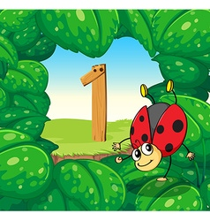 Number one with one ladybug on leaves vector image vector image