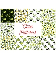 Olive fruits with oil seamless patterns set vector image