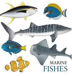 01 marine fish-02 vector