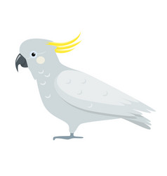 Cockatoo parrot icon in flat style vector