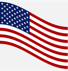flag of usa image of american flag vector image