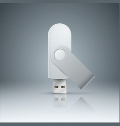 flash usb - realistic icon on the grey background vector image