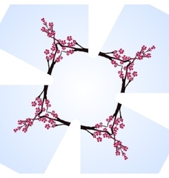 Sakura blossom cherry mirror cross frame vector