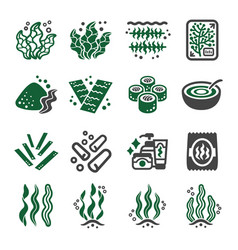 Seaweed icon vector