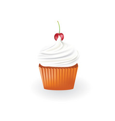 vanilla cupcake with cherry vector image