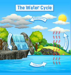 Water cycle earth vector