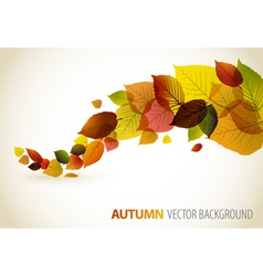 Autumn abstract floral vector