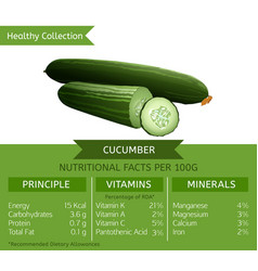 Cucumber nutritional facts vector