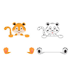 Cute tiger on white background drawing tiger vector