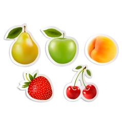 Five fruit stickers vector
