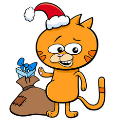 Kitten on christmas time cartoon vector