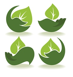 leaves and hands vector image
