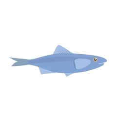 Sardine sea food sealife traditional vector