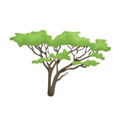 Tree in the savannahafrican safari single icon in vector