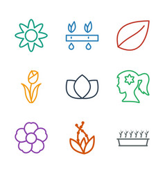 9 flower icons vector