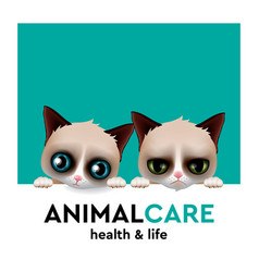 animal care hospital concept pet care vector image