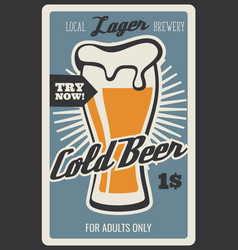 beer bar and brewery drinks vector image