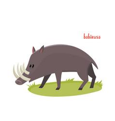 cute babirusa in cartoon style isolated on vector image