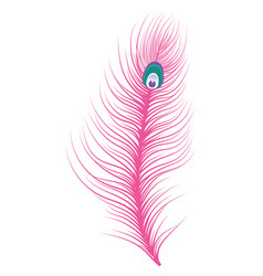 feather icon isolated vector image
