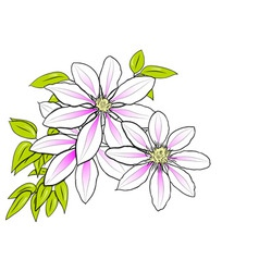 flower on the white background vector image