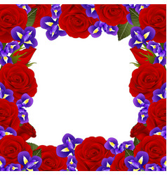 red rose and iris flower border vector image