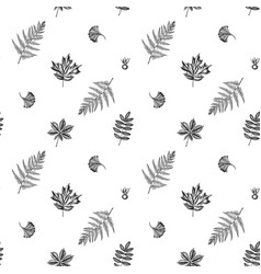 seamless pattern with black and white fern dog vector image