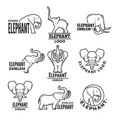 stylized elephants templates vector image